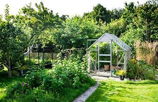 Serres de jardins